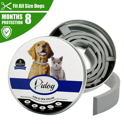 Flea and Tick Collar for Dog Cat Adjustable Insect Repel Killer Prevent 8 Months