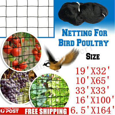 2PACK 6.5/'x10/' Insect Screen Garden Netting against Bugs Birds//Squirrels