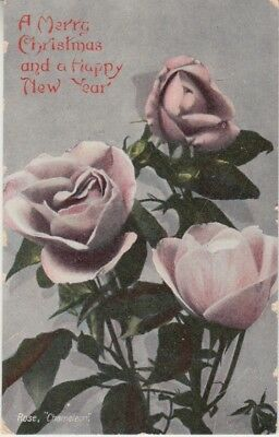 Australia - Merry Xmas & Happy New Year (Post Card) 1907