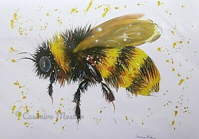 Bumble bee  . PRINT, size A4 from original watercolour By Casimira Mostyn