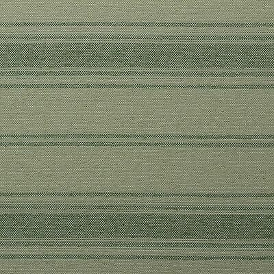 "Outdura Touche Vert Green Stripe Outdoor Indoor Upholstery Fabric By Yard 55""w"