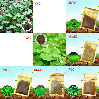 Plant Seed Fish Tank Aquarium Aquatic Water Grass Decor Garden Foreground Plants