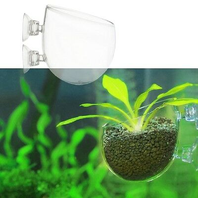Mini Aquarium Red Shrimp Fish Tank Crystal Holder Aquatic Plant Glass   HOT