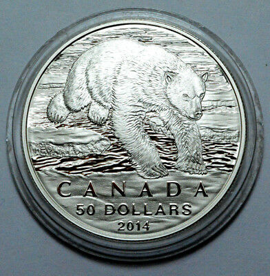 Rare 2014 Canada $50.999 Silver Coin Limited Ed.Polar Bear Proof Coin in Capsule