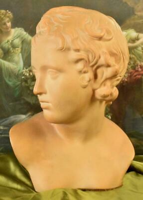 Stunning Antique French Architectural Terracotta Bust, Neoclassical Young Adonis