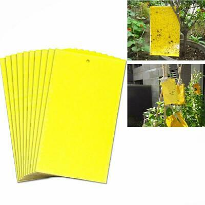 10pcs Large Yellow Greenhouse Sticky Traps Catch Multiple Flying Insect/Pests UK