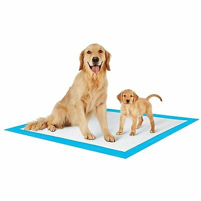 PETSWORLD Dog Puppy Training Pads, 30x36 (2400 Pads)