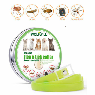 Anti Flea & Tick Collar Mosquito Insect Protection For 6 Months Dogs Cats Pets