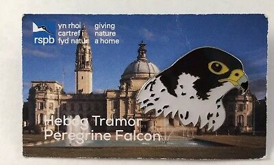 Colourful RSPB GNaH Pin Badge On Welsh Card - Peregrine Falcon Hebog Tramor