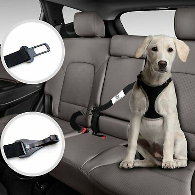 Dog Seat Belt Harness >> Dog Seat Belt Harness With Safety Leads Safety First 11 99