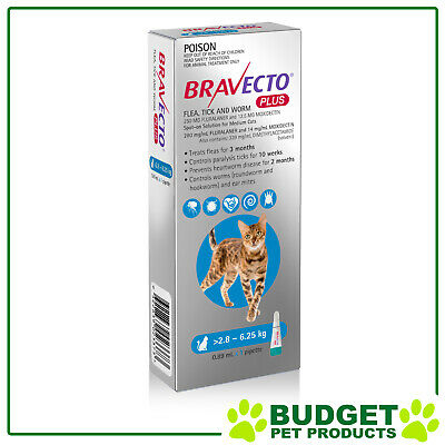 Bravecto Plus For Medium Cats 2.8 - 6.25kg 1 Pack