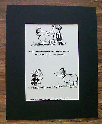 Dog Child Cartoon Print Norman Thelwell Sit Come Commands 1964 Bookplate Matted