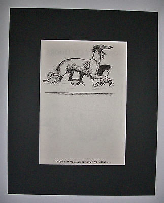Dog Cartoon Print Norman Thelwell Walk Quietly Heel Bookplate 1964 8x10 Matted