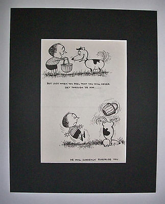 Dog Cartoon Print Norman Thelwell Surprising Trick Bookplate 1964 8x10 Matted