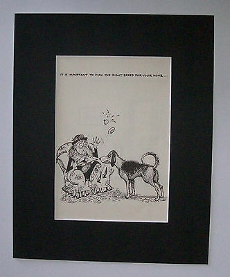 Dog Cartoon Print Norman Thelwell Pick Right Breed Bookplate 1964 8x10 Matted