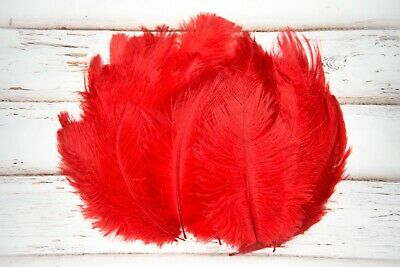 Small Bright Red Fluffy Ostrich Feathers