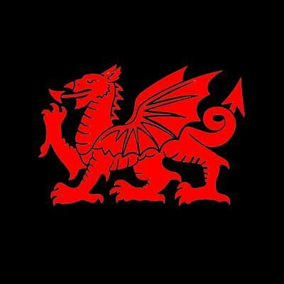 Welsh Dragon Small Sticker Caravan Motorhome Self Adhesive Car
