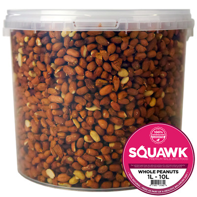 SQUAWK Whole Peanuts - Fresh Garden Wild Bird Seed Nut Feed In Tubs For Birds