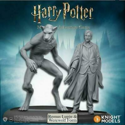 Harry Potter Miniatures 35mm 2 Pack Remus Lupin
