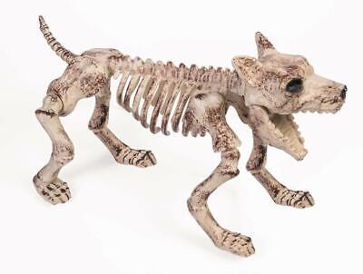 Bone Skeleton Dog Halloween Prop Décor Small