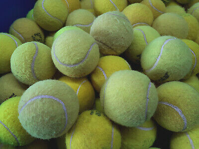 Used Tennis Balls For Dogs- 4, 5, or 6 -Wash & Sanitise To Make Them Pet Safe !