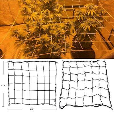 Scrog 80Cm Sea Of Green Plant Support Cell For Grow Tent Elastic Net 36/49 Slot