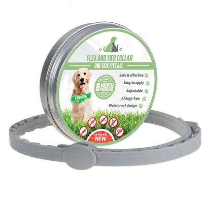 Seresto Pets Flea And Tick Collar Insect Mosquito Killer For Dogs Cats 2019 Hot