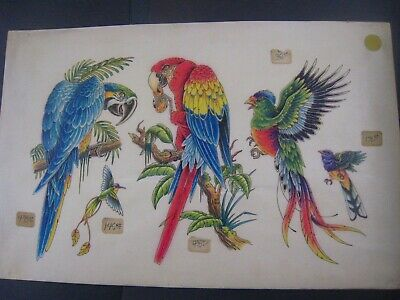 VINTAGE Parlor-Used Tattoo Flash ' PARROTS '..11 X17..HAND-COLORED