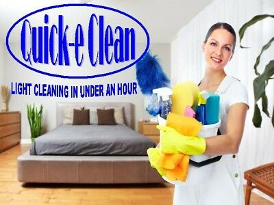 Cleaning, company, business, website For Sale, work at home, money making,