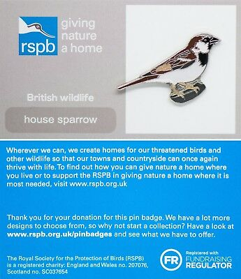 RSPB Pin Badge | House Sparrow | GNaH [01321]