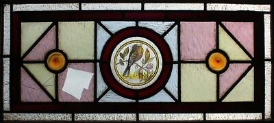 Pretty Antique English Painted Bird Transom Stained Glass Window