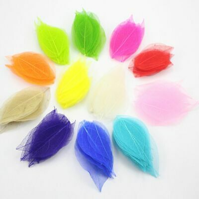 Art Bookmarks Accessories Dried Flowers Handmade Material 20Pcs Natural Leaves