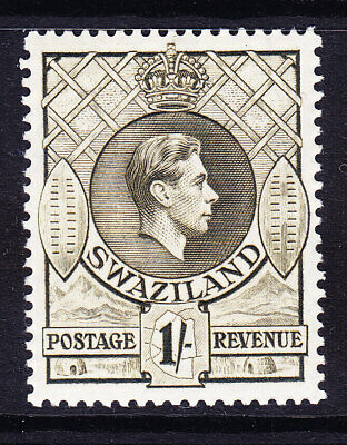 SWAZILAND GVI SG35 1/- brown-olive P131/2x13 very lightly mounted mint Cat £28