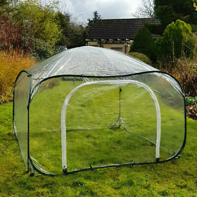 Ultra Clear Poly Pop Up Fruit Veg Cages Greenhouse Polyhouse - 1.25m W x 0.75m H