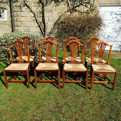 Georgian Fruitwood Hepplewhite Rush Seat Set of 8 Country Dining Chairs C1800