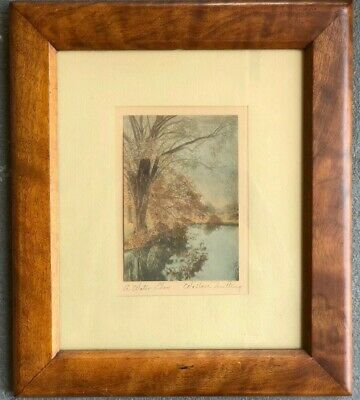 "Wallace Nutting Print On Textured Paper ""A Water Elm"" Signed"