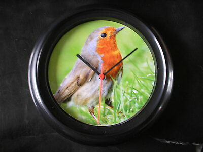 Robin  Garden Bird One Of A Kind Wall Clock Limited Edition Of 1 Only!!