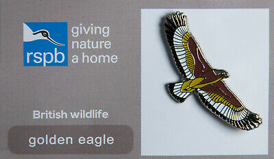 RSPB Pin Badge | golden eagle flying GNAH (00204)