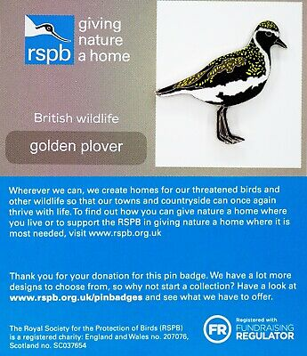 RSPB Pin Badge | golden plover GNAH (01380)