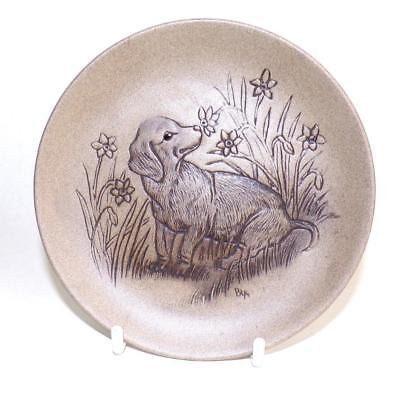 Poole Pottery Dog Series Display Plate Featuring a Dachshund made in Stoneware