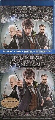 Fantastic Beasts The Crimes Of Grindelwald - Dvd + Digital + Slipcover No Bluray