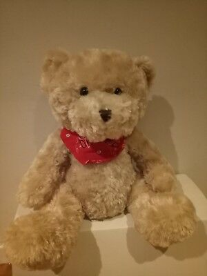 Weighted soft toy, Teddy Bear
