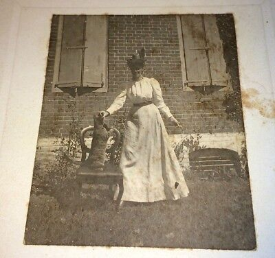 Antique Victorian Fashion Woman W/ Pet Cat Performing Trick Animal Cabinet Photo