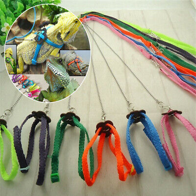 Adjustable Bearded Dragon Reptile Lizard Gecko Critters Harness Leash Keep Rope
