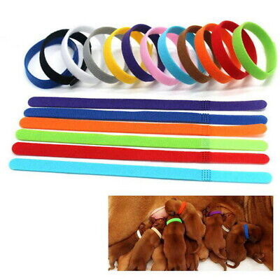12-colors Identification ID Collars Bands Whelping Puppy Kitten Dog Pets Cat F