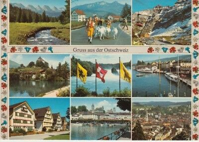 Switzerland - Greetings from Switzerland (Post Card) 1960's