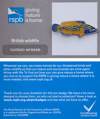 RSPB Pin Badge | cuckoo wrasse GNAH (00863)
