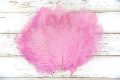 Small Bright Baby Pink Fluffy Ostrich Feathers