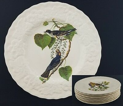 "(7) Alfred Meakin White Audubon Birds of America Luncheon Plates 8 3/4"" England"
