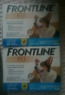 Frontline plus for dogs 23-44 6 months gold formula
